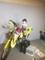 170814 東京ドームでエグゼイド見たよ