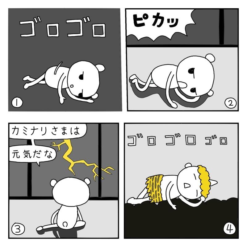 f:id:kanarihikokuma:20161012192855j:image:w300