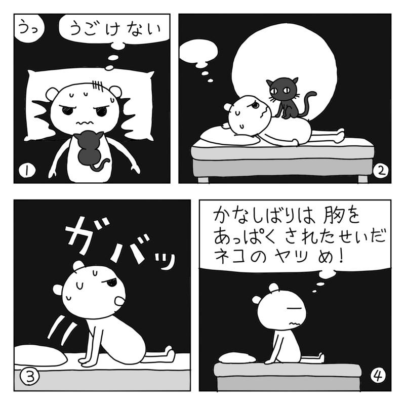 f:id:kanarihikokuma:20161209104941j:image:w340