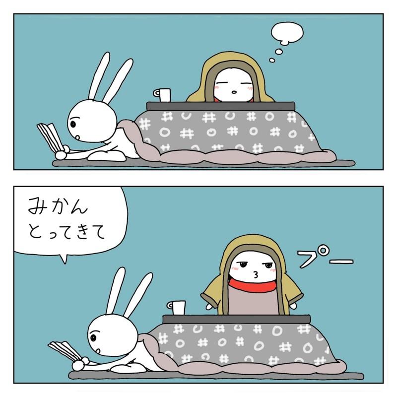 f:id:kanarihikokuma:20161212192501j:image:w330
