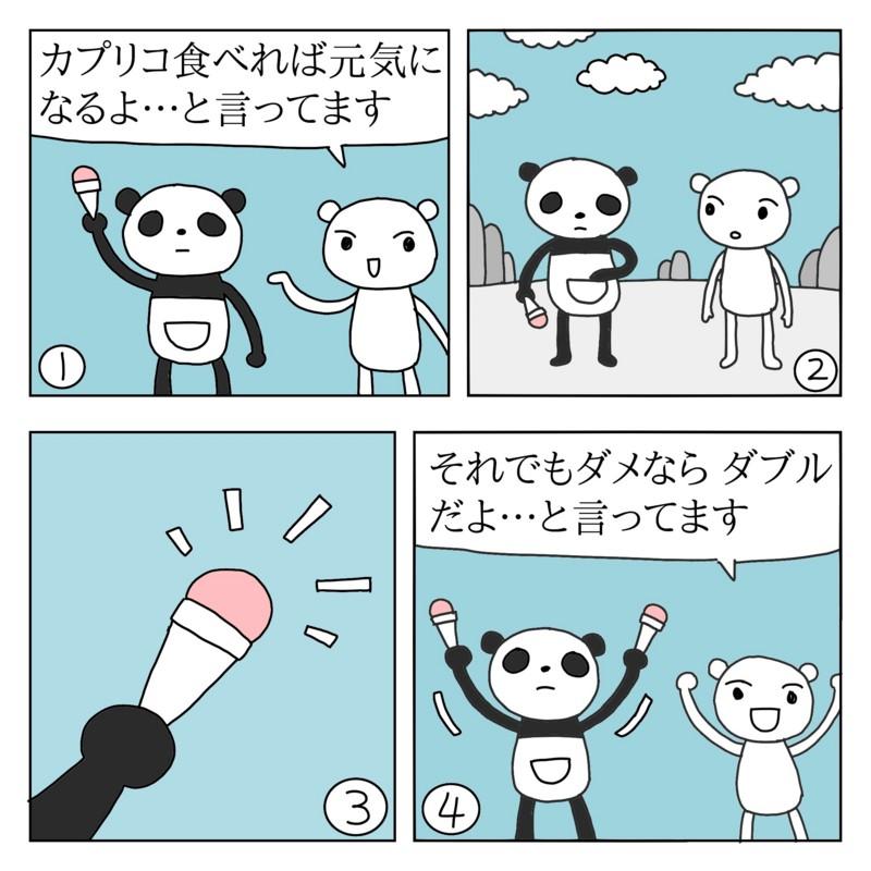 f:id:kanarihikokuma:20170127230851j:image