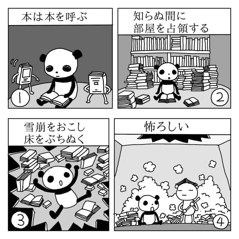 f:id:kanarihikokuma:20170709173704j:image:w300