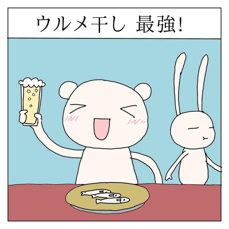 f:id:kanarihikokuma:20170725163943j:image:w300