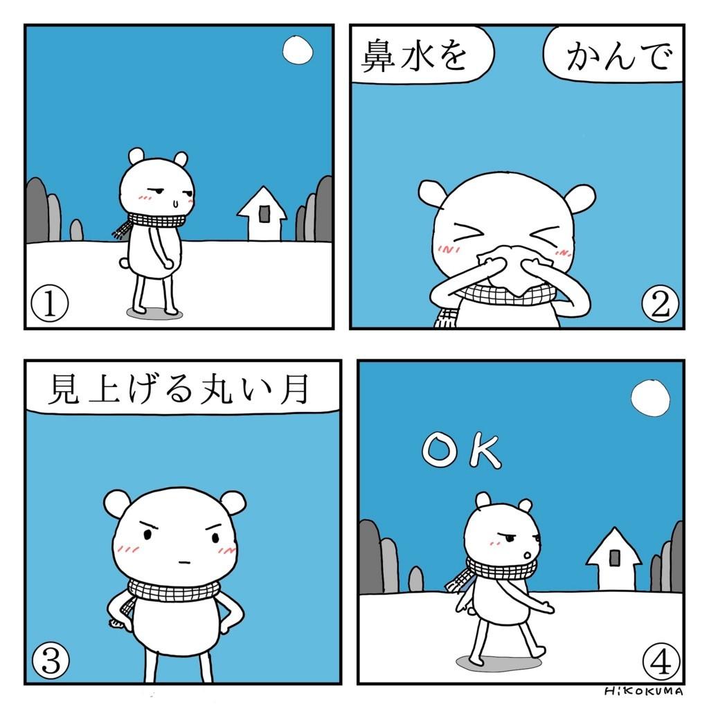 f:id:kanarihikokuma:20180130084026j:plain