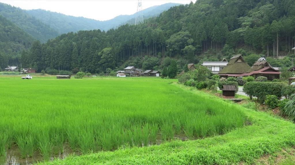f:id:kanata_kikan:20150808114452j:plain