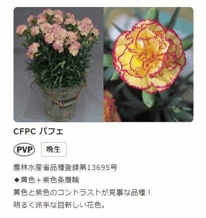 f:id:kanaxx43:20210508170449p:plain