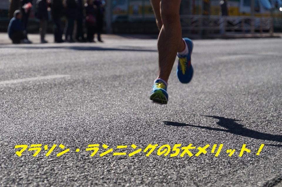 f:id:kanayan-run:20191109130045j:plain