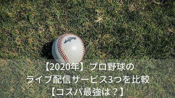 f:id:kanayan-run:20200314214137j:plain