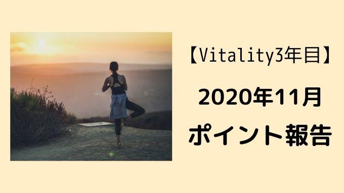 f:id:kanayan-run:20201130230439j:plain