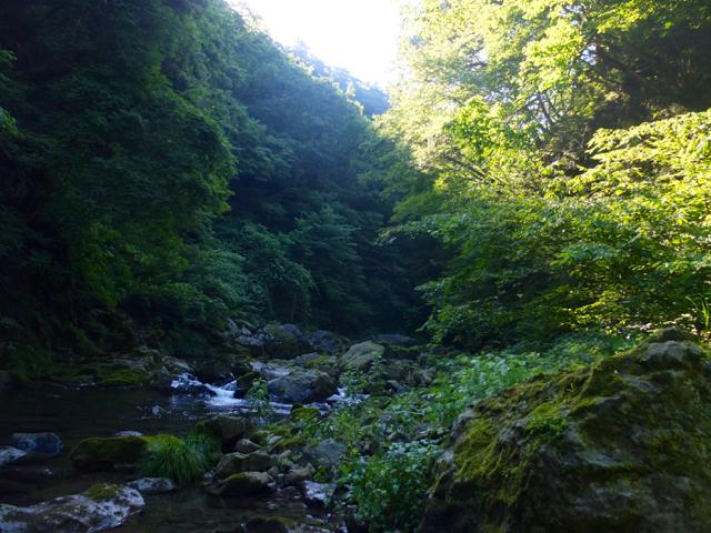 f:id:kanazawajazzdays:20160627173810j:plain