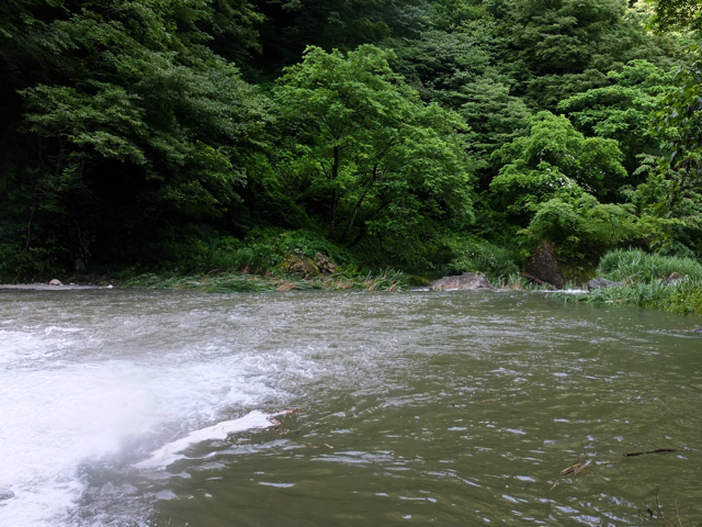 f:id:kanazawajazzdays:20160716152452j:plain