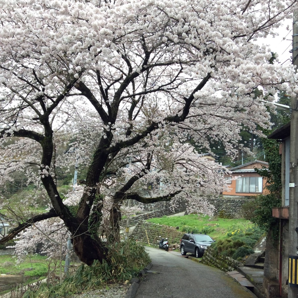f:id:kanazawajazzdays:20170409200302j:plain