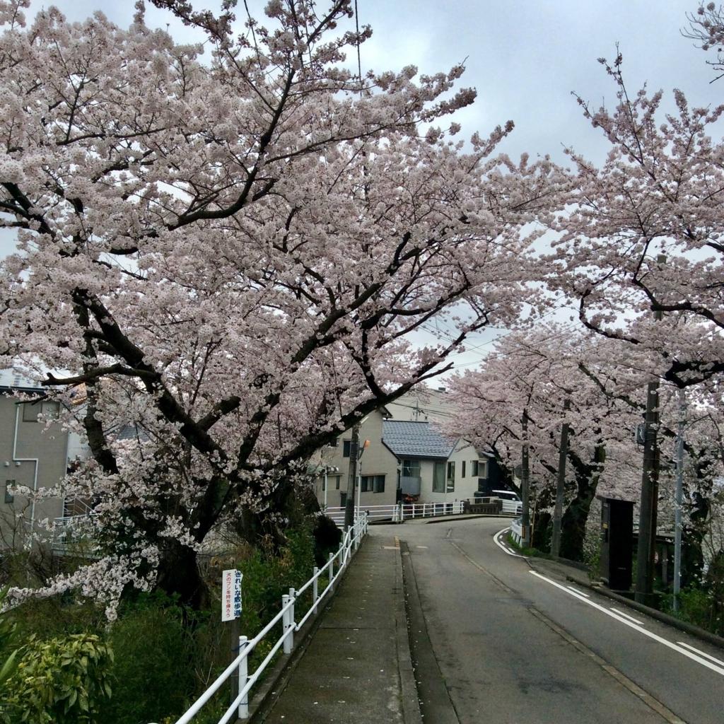 f:id:kanazawajazzdays:20170409200432j:plain