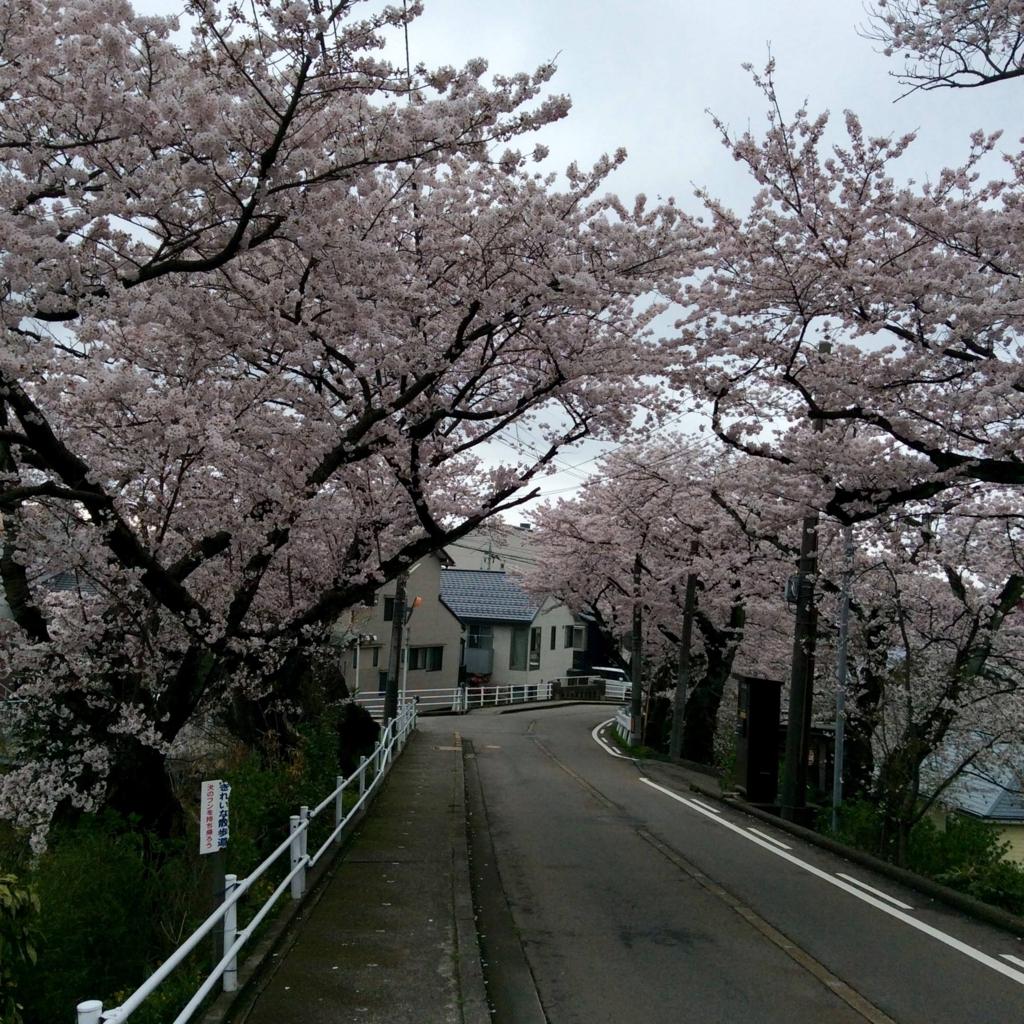 f:id:kanazawajazzdays:20170409201655j:plain