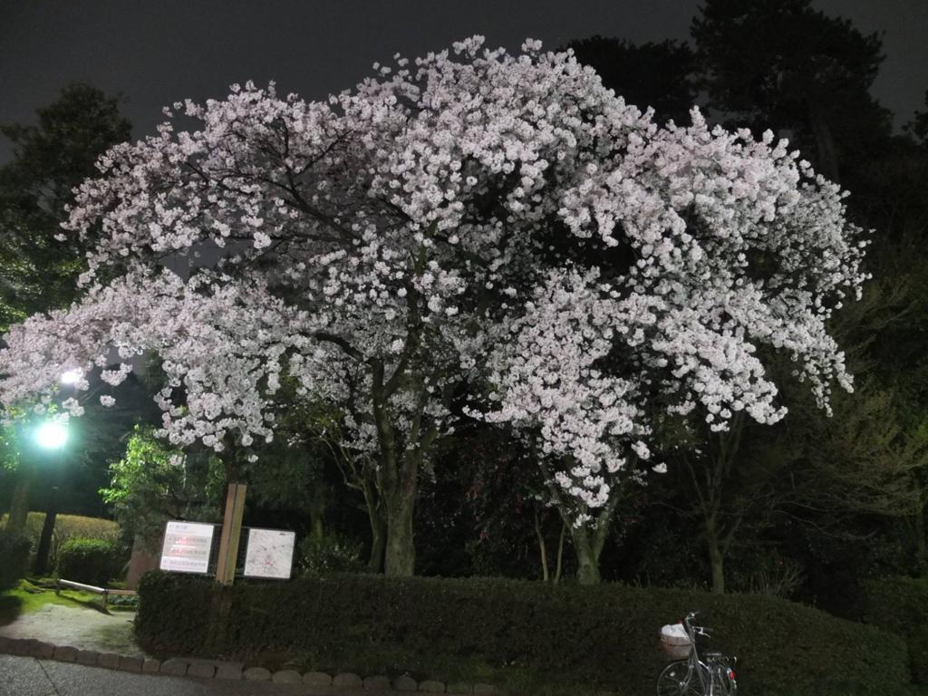 f:id:kanazawajazzdays:20170409204426j:plain