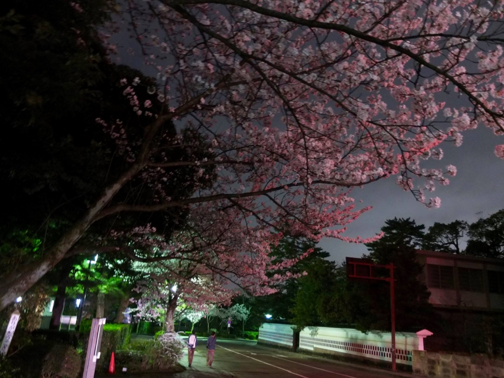 f:id:kanazawajazzdays:20170409204453j:plain