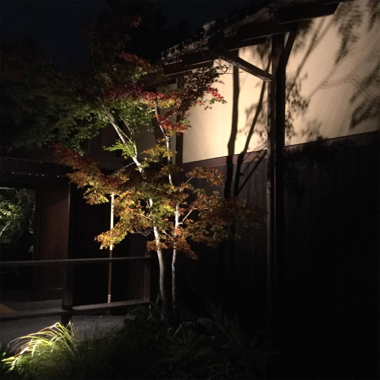 f:id:kanazawajazzdays:20181109091125j:image