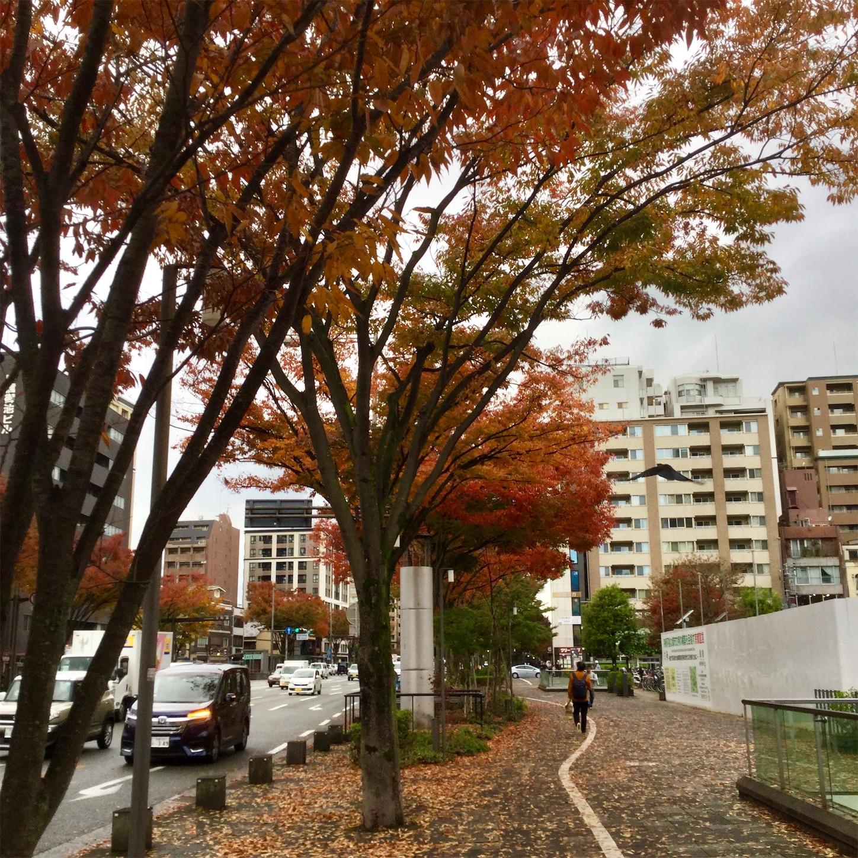 f:id:kanazawajazzdays:20181109175715j:image