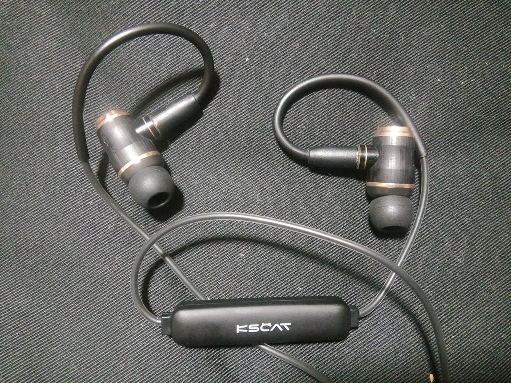 KSCAT BC05(JVC HA-FX1100 カスタム)