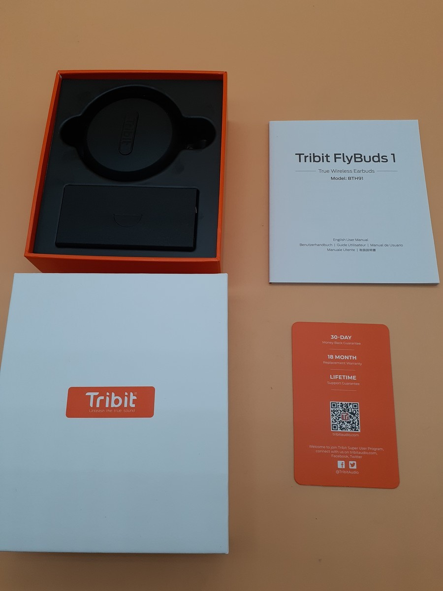 Tribit Flybuds 1