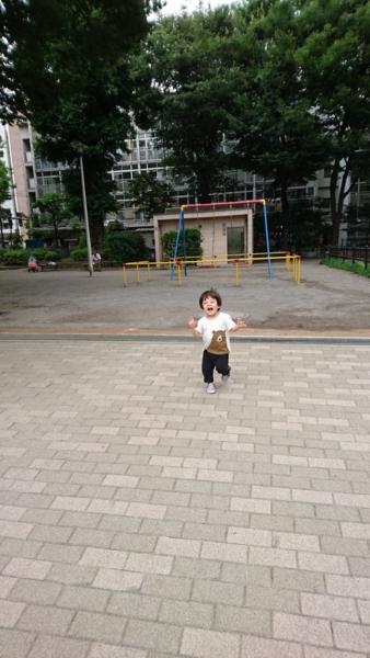 f:id:kanchi_guy_nice_guy:20160622063759j:plain