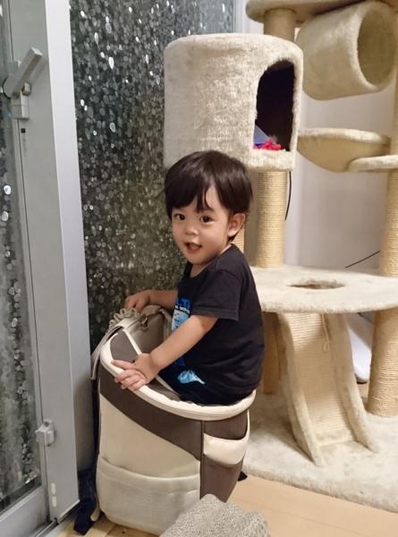 f:id:kanchi_guy_nice_guy:20160808213021j:plain