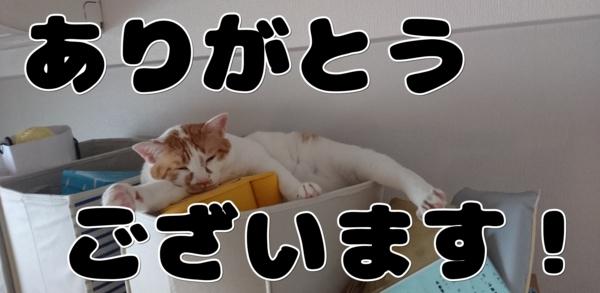 f:id:kanchi_guy_nice_guy:20160828222316j:plain