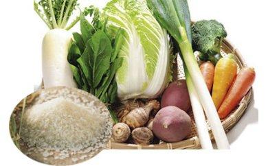 新米5kgと秋冬野菜セット