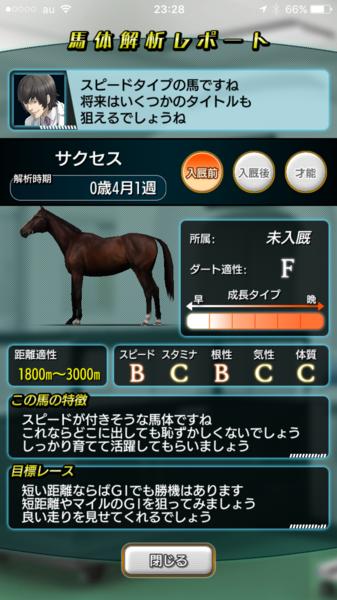 放牧実験の馬