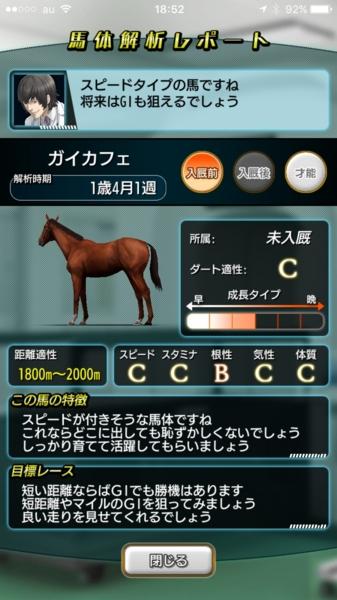 勝負根性調教モデル馬