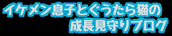 f:id:kanchi_guy_nice_guy:20170401174637p:plain