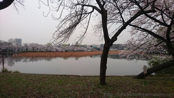 f:id:kanchi_guy_nice_guy:20180402163606j:plain