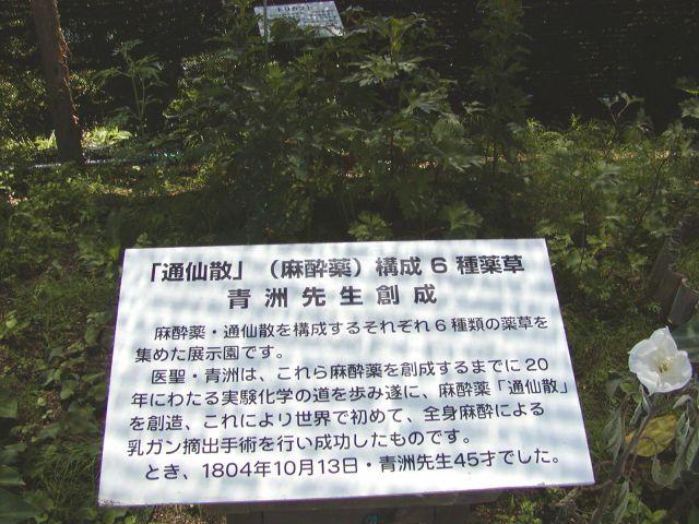 f:id:kandou:20070616202919j:image:h120