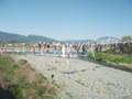 201300413 鯉のぼりの川渡し(九度山)