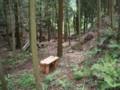 雪で倒れた木を片付けたあと
