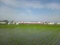 雨上がりの早朝7時すぎ。背景は南海高野線の特急列車