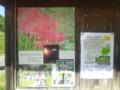 彼岸花祭りや稲刈り体験の掲示板(かかしロード)