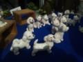 20131027 犬の小さな陶器の店