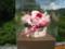 葉菜野のフラワーアレンジメントは贈り物に人気(河内長野市)