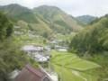20150419 山村(河内長野市)