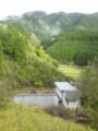 20150414 雨上がりの山村(河内長野市)