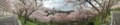 20170412 美加の台(パノラマ撮影)