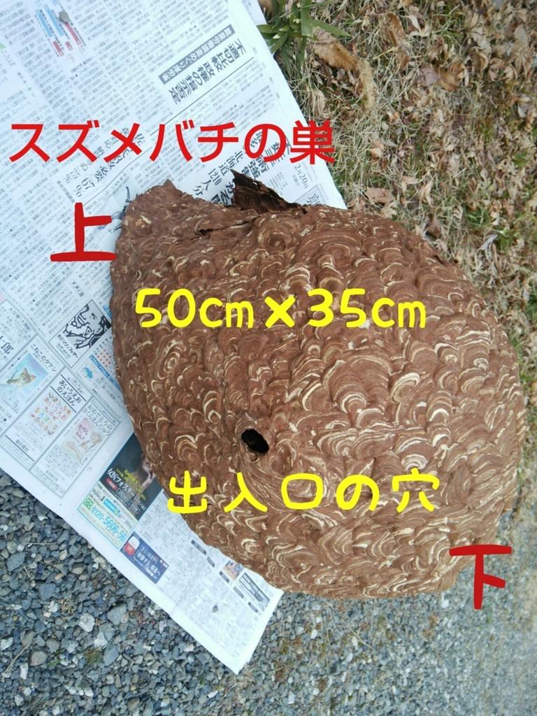 f:id:kandou:20180220213653j:plain