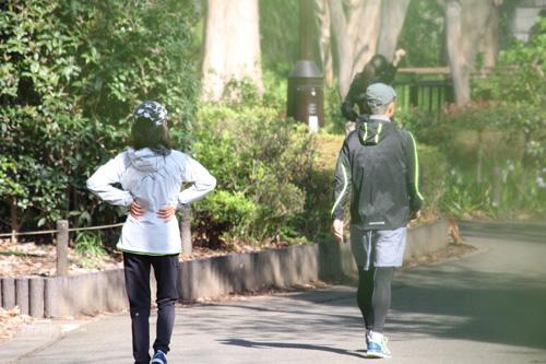 初めてのフルマラソン、1ヶ月を切ったら走りこみよりも歩く量を増やして調整を