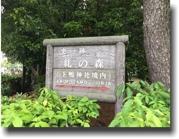 f:id:kane_katu:20190509014349j:plain