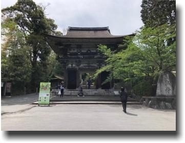 f:id:kane_katu:20190513223417j:plain