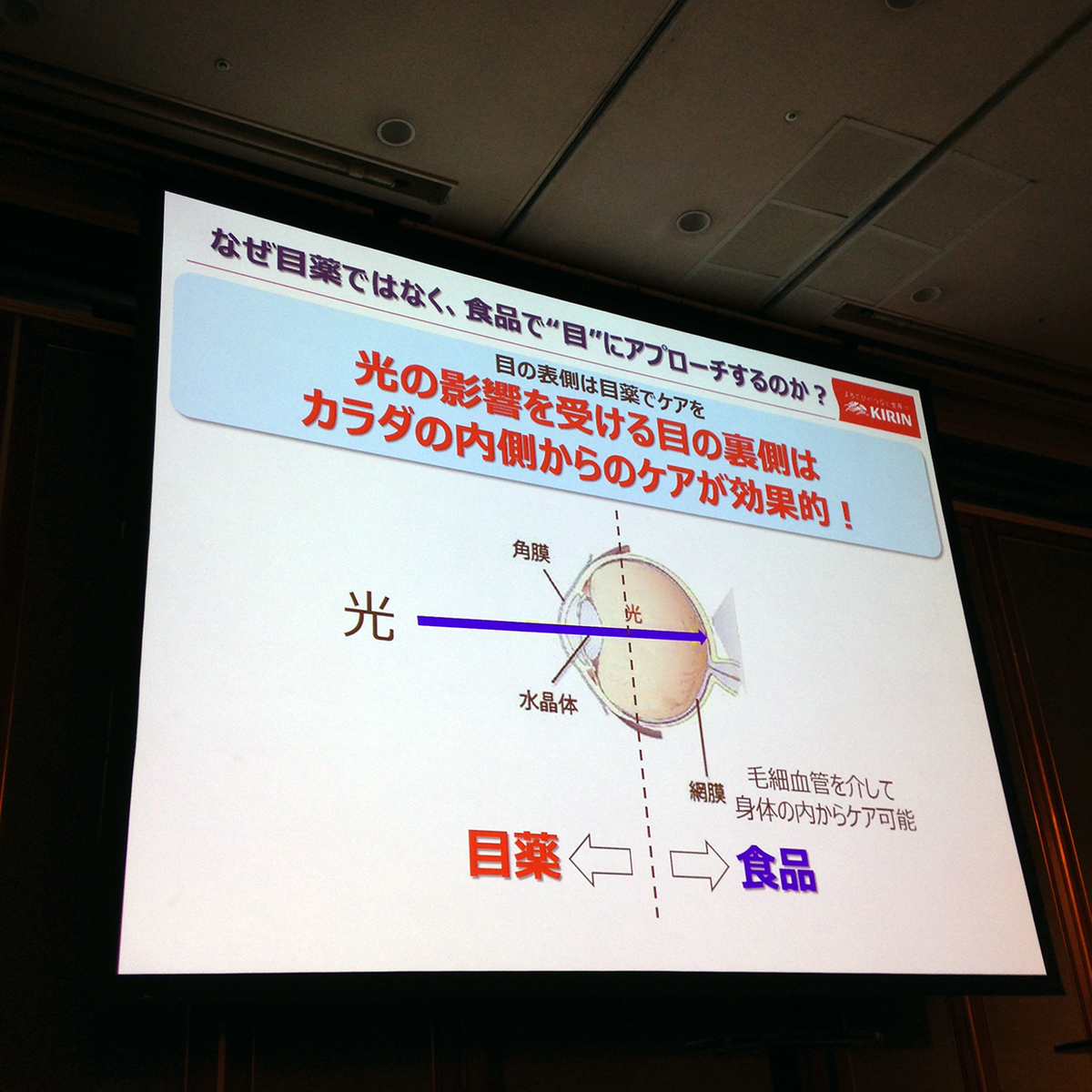 f:id:kanechan_japan:20191204225856j:plain