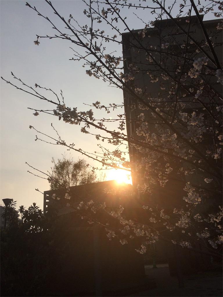 f:id:kanedanobaiku:20180501160539j:image