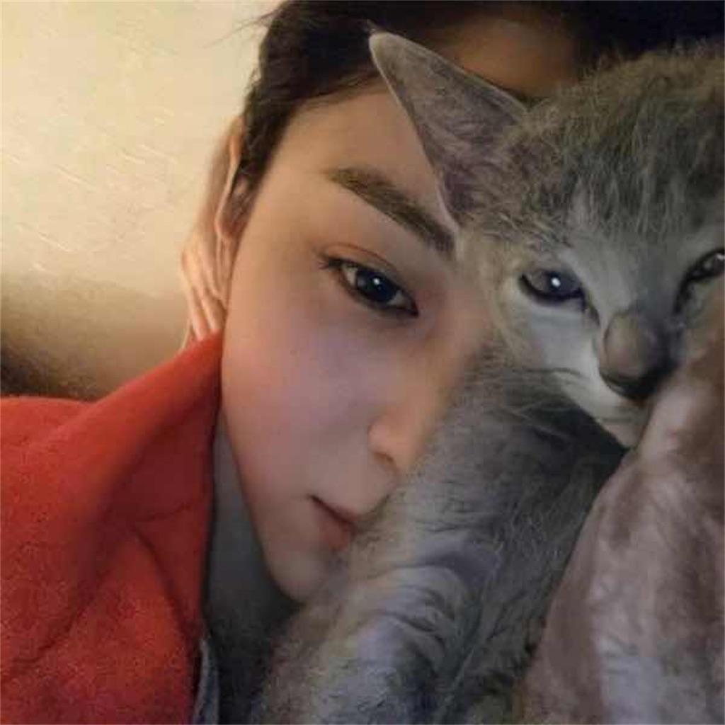 ハン・ソヒと飼い猫