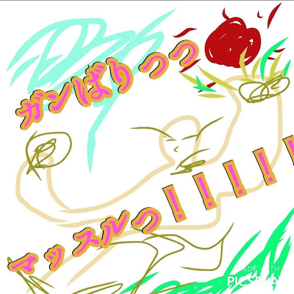 f:id:kanemasa8220:20170105201033j:image